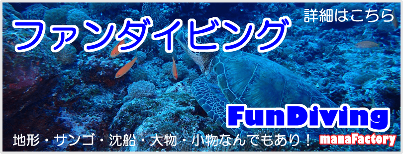 宮古島でファンダイビング/マナファクトリー
