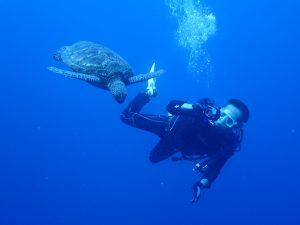 Kさんウミガメを撮す