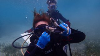 2018年5月8日 ビーチ体験ダイビング
