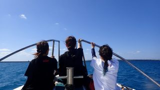 初ボート体験ダイビング